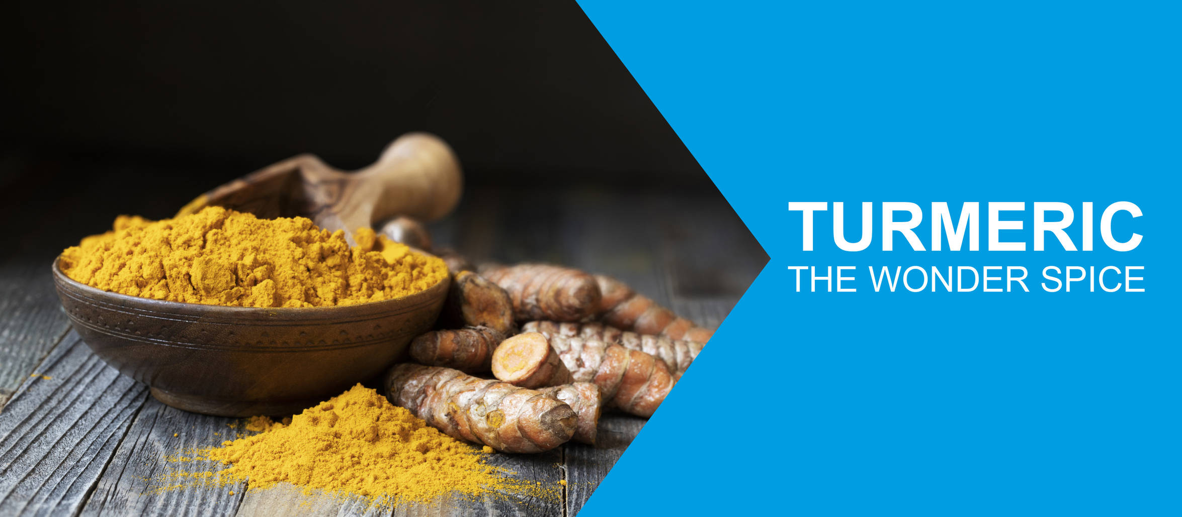 "Bowl of turmeric surrounded by fresh ginger, overlayed with the title "" Turmeric the wonder spice"""