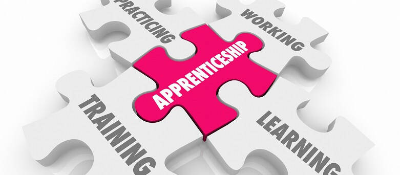 Graphic of puzzle pieces, visible on the puzzle pieces are 'Apprenticeships', 'Learning', Training'